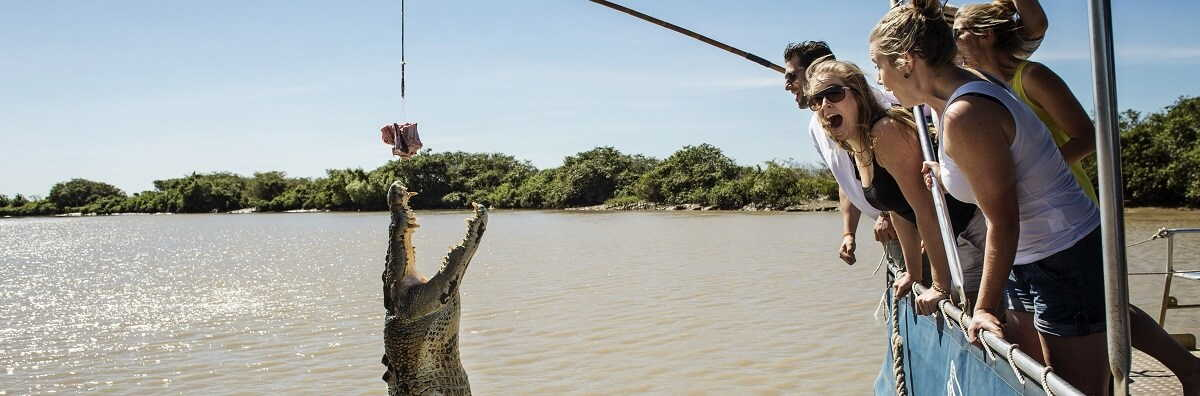 Quick Facts About Saltwater Crocodiles