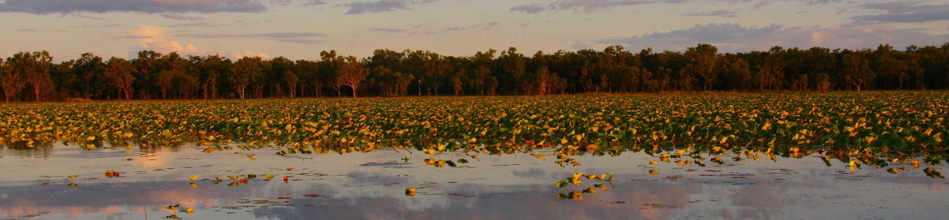 Why you should visit Kakadu's East Alligator River